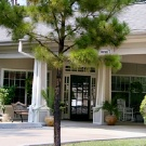 Silverado Senior Living - The Woodlands