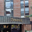 Tamarack