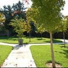 Emeritus at Austin Gardens
